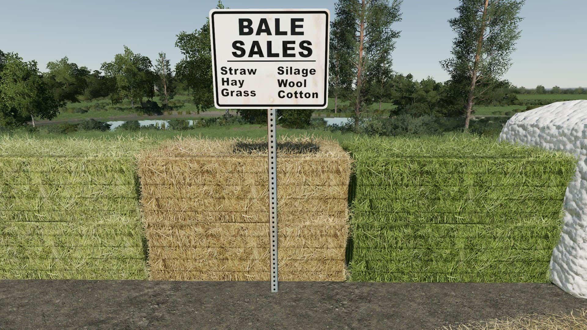 BALE SALE POINT (PLACEABLE) V1 0 Mod - Farming Simulator 19